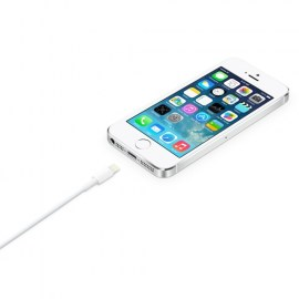 Apple Lightning To USB Cable 0.5m White_2.jpg